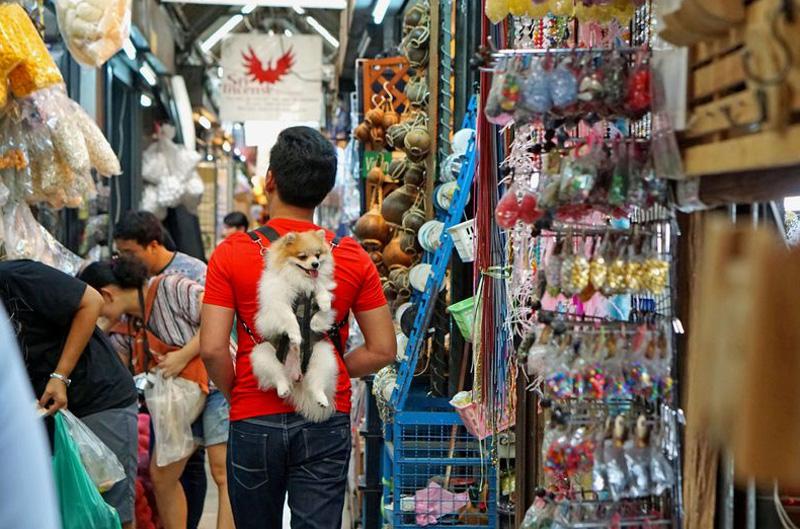 Шоппинг в Бангкоке в августе