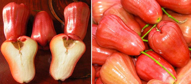Розовое яблоко (Chompoo)