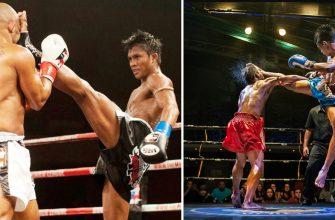 Бокс или тайский бокс - разница и общие черты