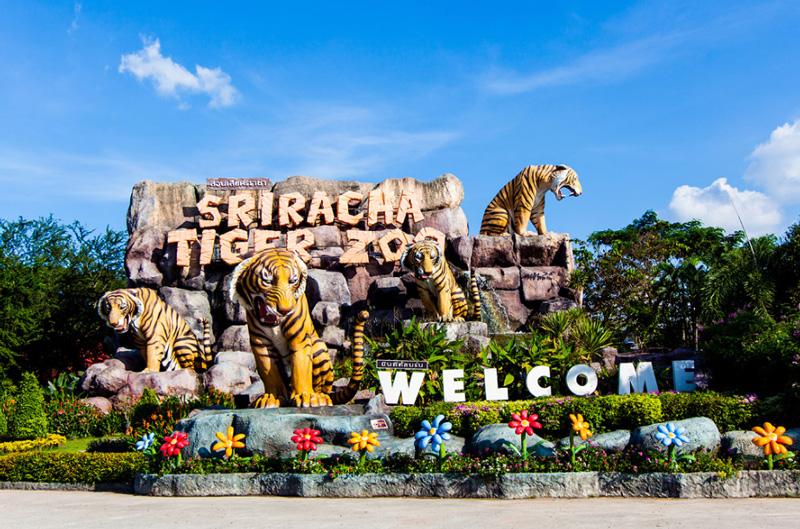 Тигровый зоопарк (Tiger Zoo (Sriracha))