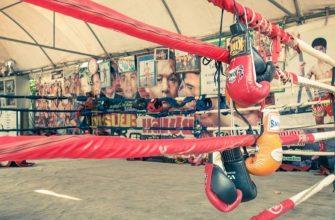 Лучшие перчатки для тайского бокса - как и где купить в Таиланде