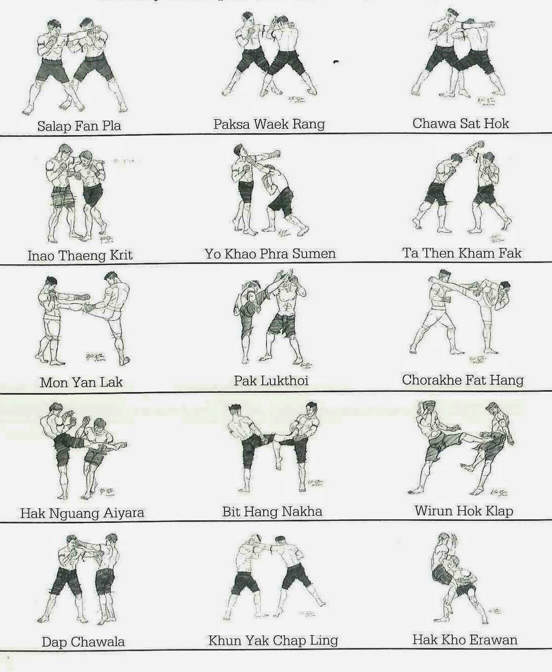 Техники и приёмы тайского бокса