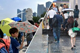 Погода в Сингапуре в декабре - климат, температур, осадки