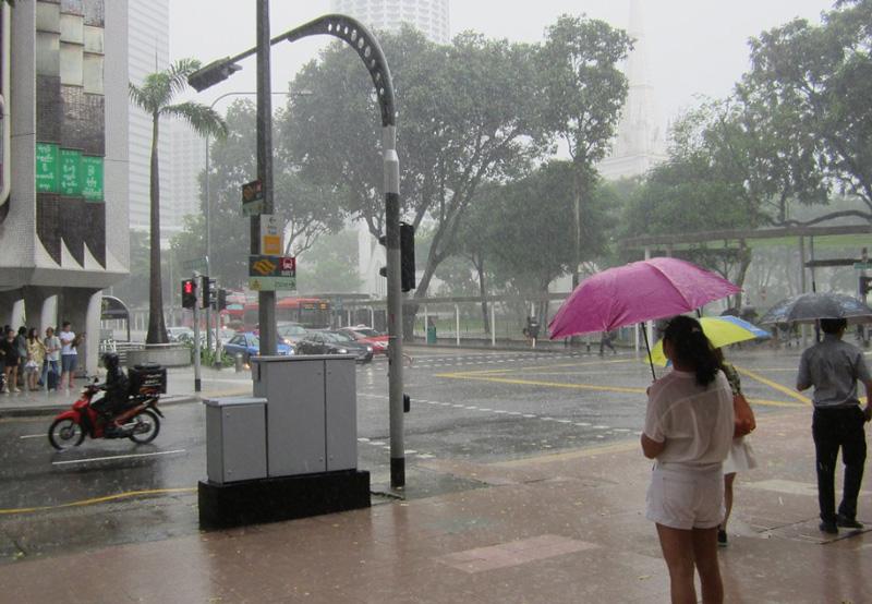 Тропический дождь в Сингапуре в январе