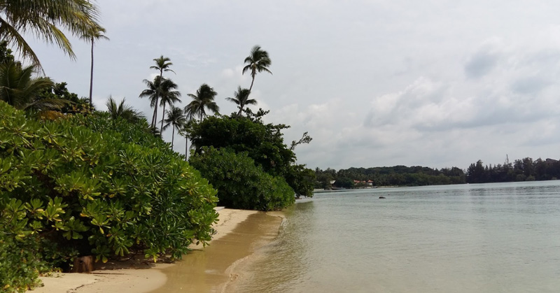 Пляж Панва (Beach PANWA)
